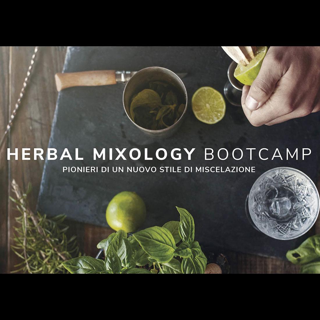 news-herbal